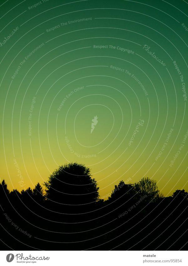 FEIERABEND Himmel Baum ruhig Wald träumen Horizont Pause Romantik Abenddämmerung Feierabend