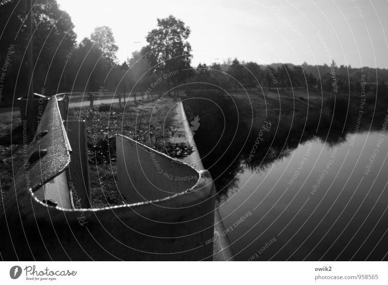 Barriere Umwelt Natur Landschaft Wasser Horizont Pflanze Baum Kanal Begrenzung Geländer Metall leuchten ruhig Idylle Anlegestelle Wasseroberfläche Glätte fest