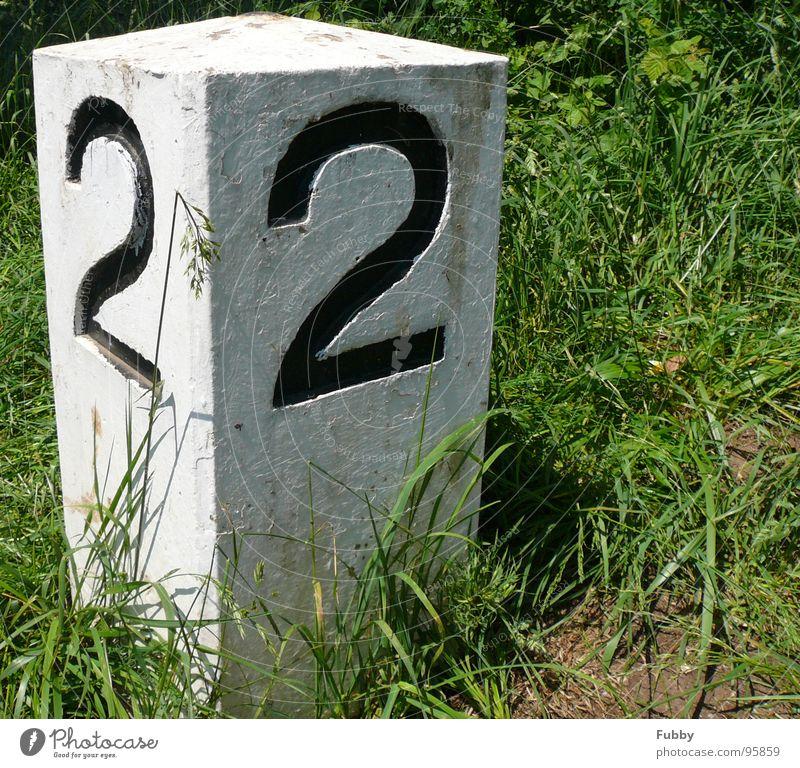 N° 22 grün Gras Stein Küste paarweise Grenze Main