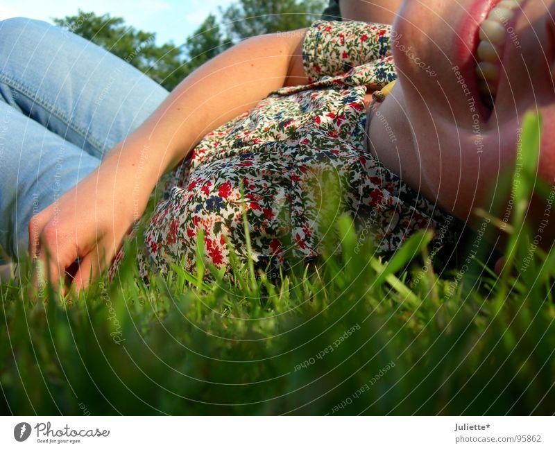 noch mehr Freude Farbe Wiese lachen Rasen Frieden