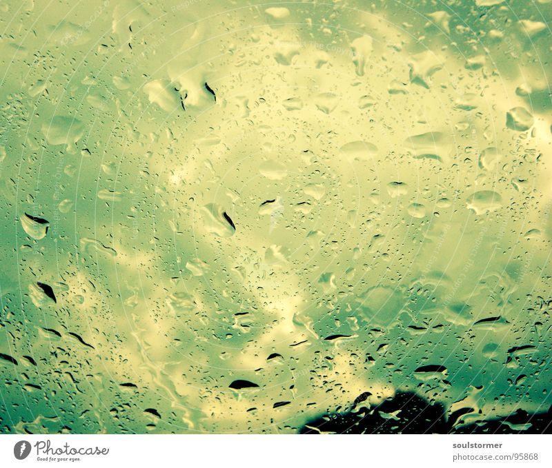 überrascht... Himmel blau Wasser weiß grün Baum Wolken schwarz gelb Fenster PKW Autofenster Regen Angst nass gefährlich