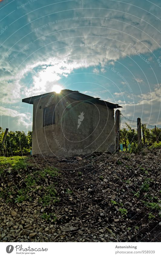 Hütte Umwelt Natur Landschaft Erde Sand Himmel Wolken Sonne Sonnenlicht Sommer Wetter Schönes Wetter Pflanze Gras Sträucher Feld Hügel Mauer Wand Dach Stein