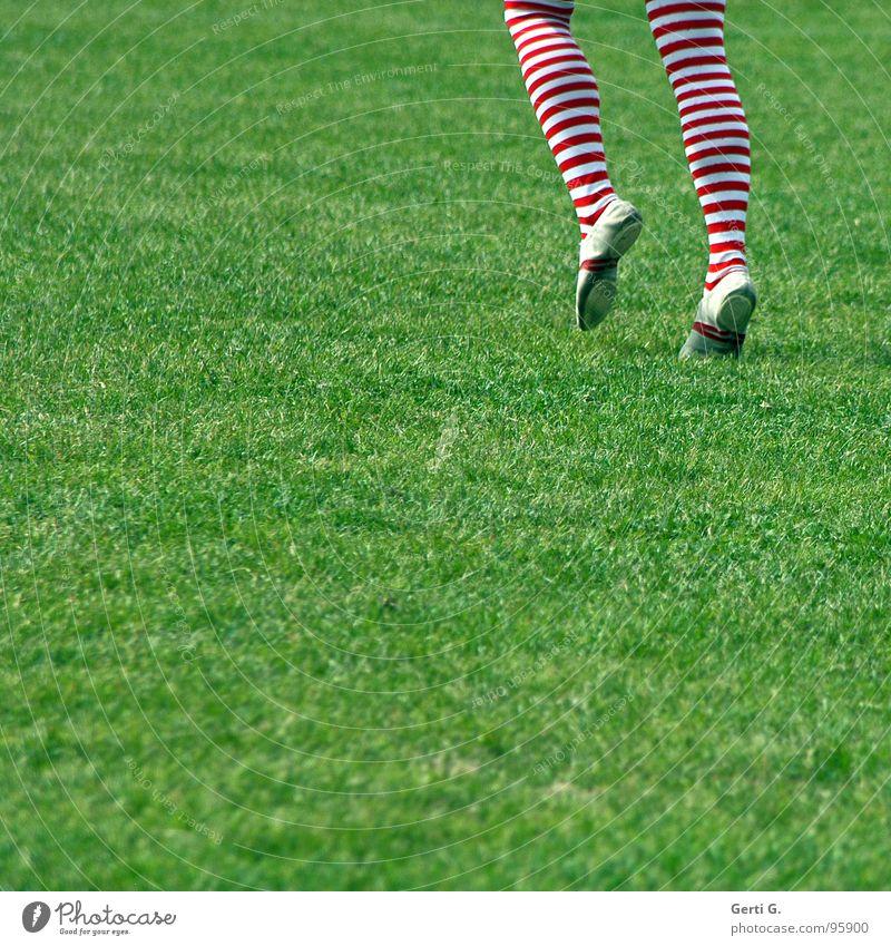 zweibeiner gestreift Strumpfhose Ringelstrümpfe Strümpfe Wiese Gras gehen Bewegung grün rot-weiß Slipper Wade Kniekehle Turnen Turner Mensch Freude Beine
