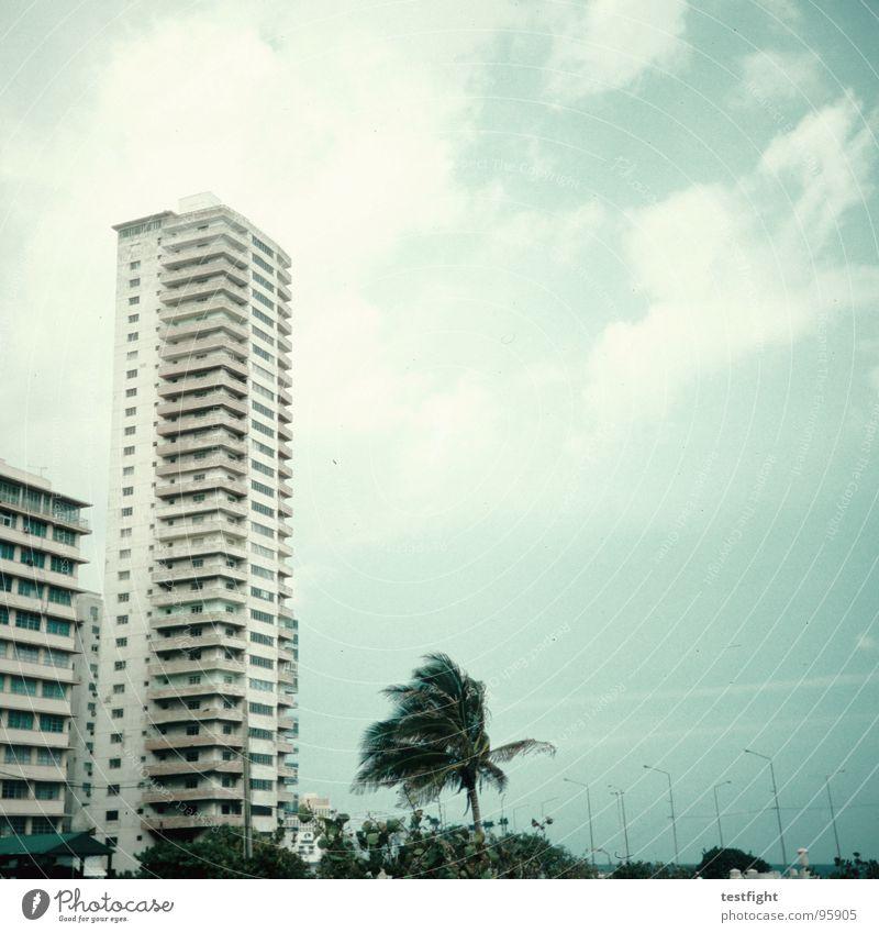 stormy weather Haus Unwetter Sturm Gebäude Hochhaus Stadt Baum Palme Kuba Havanna Himmel Wolken frei Erholung Sehnsucht Fernweh Heimweh Ferien & Urlaub & Reisen
