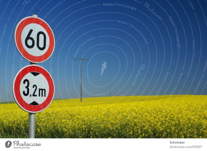 Raps - Idylle Natur Himmel blau Sommer gelb Wiese Frühling Landschaft Feld Schilder & Markierungen Horizont Verkehr 3 Elektrizität Idylle Grenze