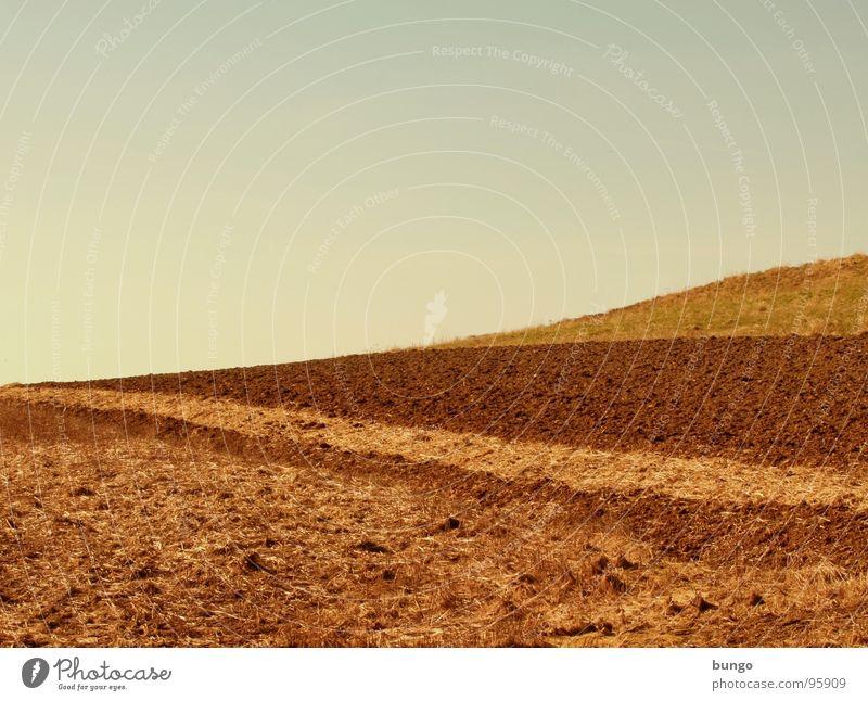 Mach dich vom Acker Wiese Sand Erde Feld Bodenbelag Landwirtschaft Ernte Ackerbau Aussaat Saatgut pflügen