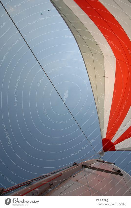 Sail and Fly Segeln Wassersport Luft Flugzeug Abenteuer segeln auf dem ijsselmeer gennaker bunte segel hohe geschwindigkeit gutes gefühl Wind