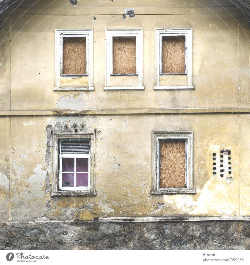 Der Individualist alt Haus dunkel Fenster Wand Gebäude Mauer grau außergewöhnlich Fassade Häusliches Leben trist Vergänglichkeit kaputt violett Verfall