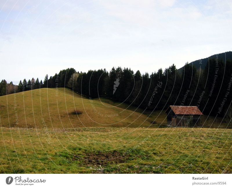 Allgäu grün Wiese Berge u. Gebirge Hügel Hütte Haus