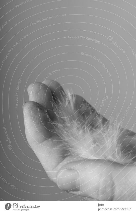 ein stück geborgenheit Wellness harmonisch Wohlgefühl Zufriedenheit Erholung ruhig Meditation Trauerfeier Beerdigung Mann Erwachsene Hand berühren tragen Schutz