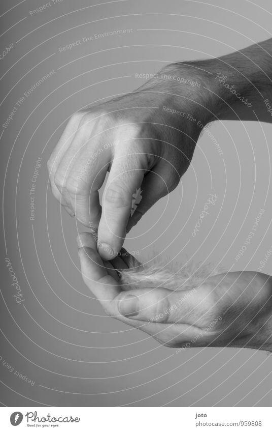 feinfühlig Mann Hand Erholung Einsamkeit ruhig Erwachsene Zufriedenheit Kraft Feder Energie berühren Schutz Hoffnung Sicherheit Wellness zart