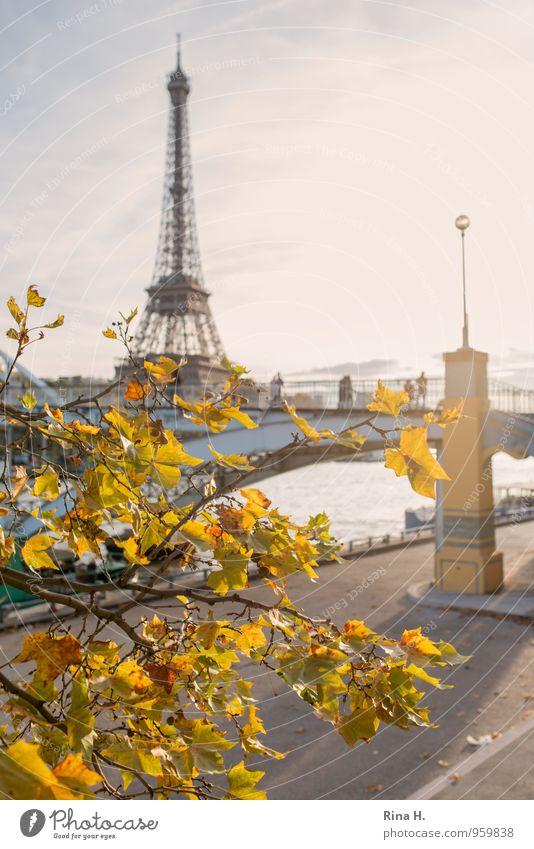 Paris im Herbst II Mensch Ferien & Urlaub & Reisen Baum Menschengruppe Tourismus Ausflug Schönes Wetter Lebensfreude Brücke Herbstlaub herbstlich Sightseeing
