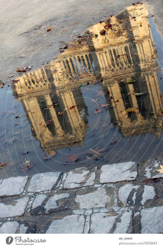 Notre-Dame im Herbst Ferien & Urlaub & Reisen alt Stadt Wasser Architektur Gebäude Religion & Glaube Stein Kunst Fassade Tourismus Kirche Bauwerk Hauptstadt