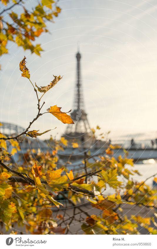 Paris im Herbst Ferien & Urlaub & Reisen Stadt Baum hell Tourismus Ausflug Schönes Wetter Lebensfreude Brücke Herbstlaub Sightseeing Städtereise Tour d'Eiffel