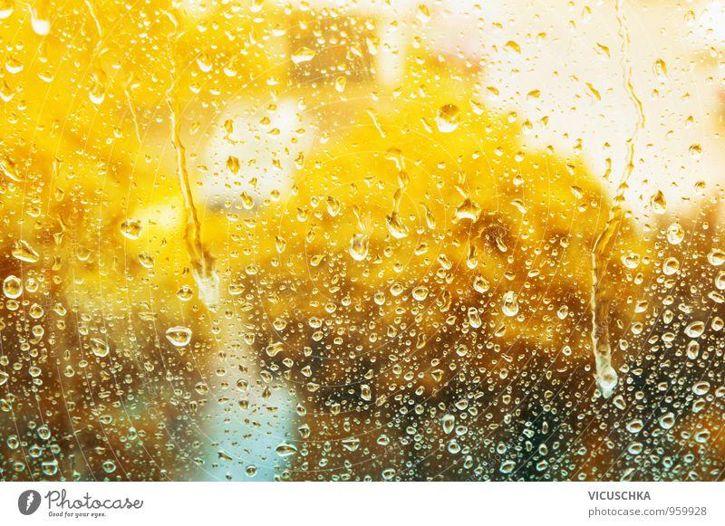 Herbstliches Glasfenster mit Regentropfen Lifestyle Design Häusliches Leben Wohnung Haus Garten Natur Wasser Wassertropfen gelb autumn Fenster Regenwasser