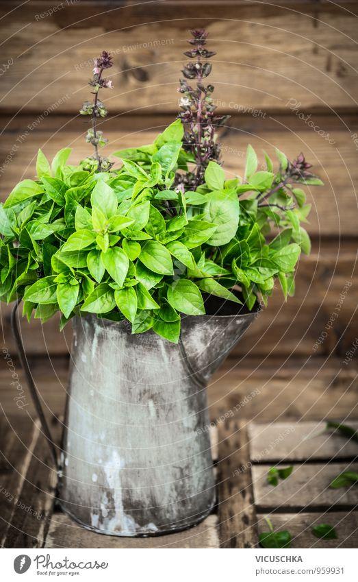 Asiatischer Basilikum in alten Blechkanne Natur Pflanze Sommer Gesunde Ernährung Herbst Frühling Holz Hintergrundbild Garten Lifestyle Freizeit & Hobby Design