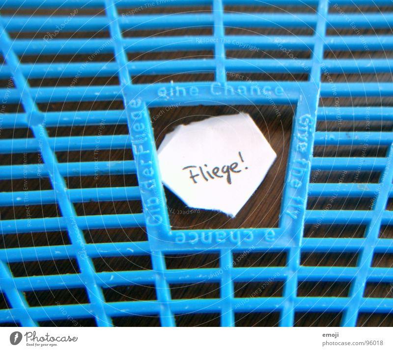 Überlebenschance I blau Freude Leben Tod lustig Fliege Zettel Raster live Überleben Chance