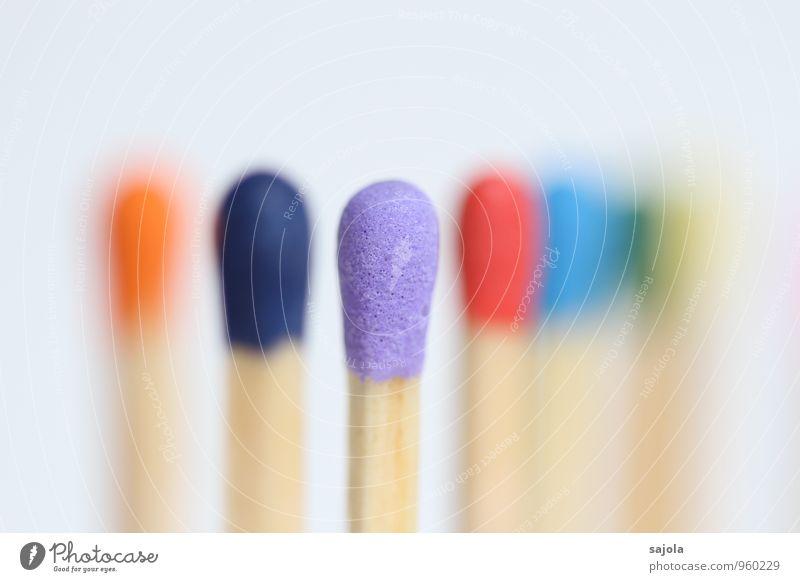 7 zwerge - lila im fokus Holz stehen Zusammensein mehrfarbig violett Team Zusammenhalt multikulturell Streichholz Streichholzkopf Kopf fokussieren Farbfoto