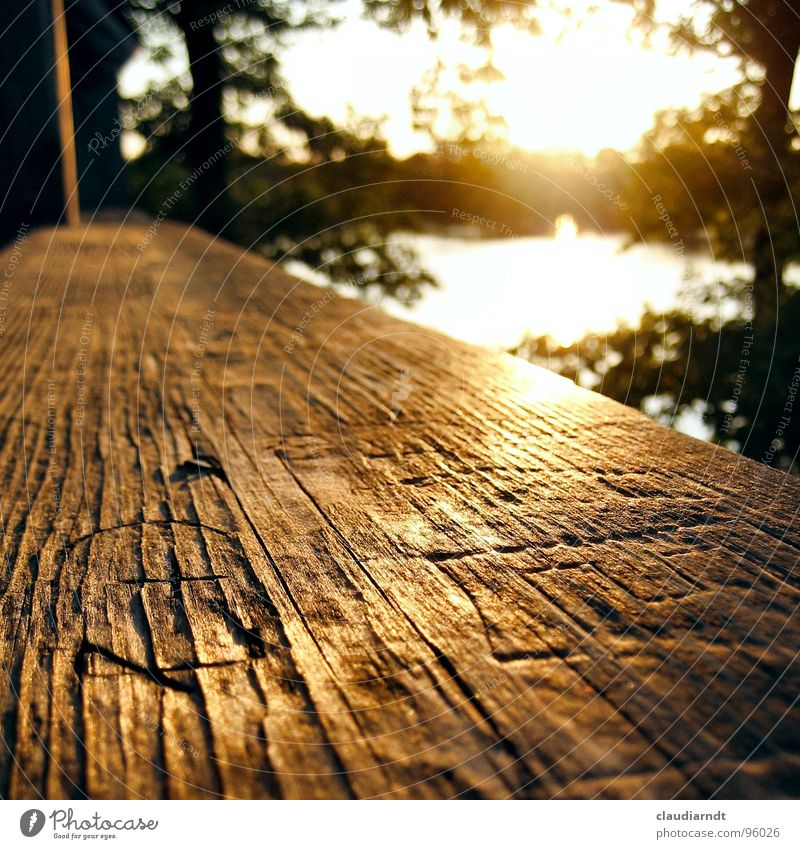 Botschaften Abendsonne Physik Sonnenuntergang spät Licht Warmes Licht See Holz Schnitzereien schnitzen Vergangenheit außergewöhnlich schön träumen ruhig