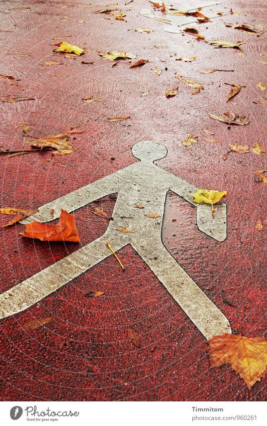 Mit Blättern leben. weiß rot gelb Straße Gefühle liegen Schilder & Markierungen ästhetisch einfach Warnhinweis Fußgänger
