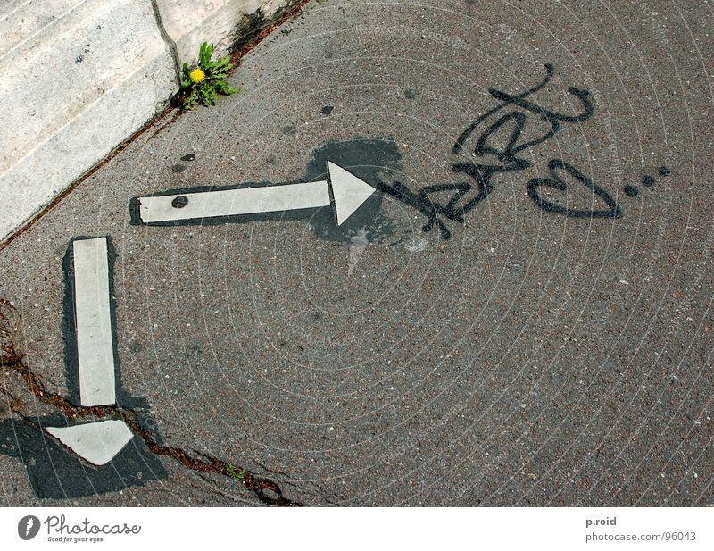 liebe und so. Stadt Sommer Sonne kalt Straße Liebe Graffiti hell Schriftzeichen Schuhe Schönes Wetter Fußweg Buchstaben Bürgersteig Klarheit Asphalt