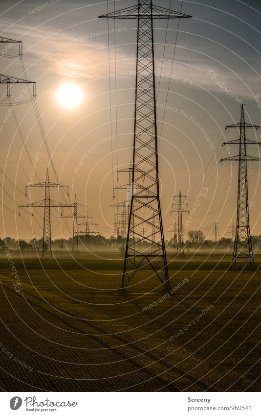 N R G Technik & Technologie Energiewirtschaft Elektrizität Strommast Hochspannungsleitung Umwelt Himmel Sonne Sonnenlicht Herbst Nebel Feld groß Stress