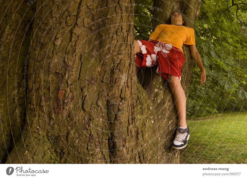 Fertig mit der Welt Jugendliche Baum grün rot ruhig Wald Erholung Wiese oben Park orange Sträucher kaputt Ende Ast genießen