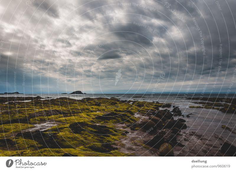 Schönes schlechtes Wetter Umwelt Natur Landschaft Urelemente Himmel Wolken Frühling Sommer Schönes Wetter Wind Küste Strand Nordsee Meer dunkel frisch
