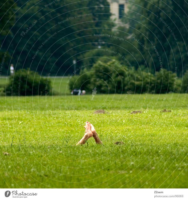 mittagspause Frau Mensch Natur grün Sommer Ferien & Urlaub & Reisen Haus Erholung Wiese Fenster Gras Fuß Park Beine frei hoch