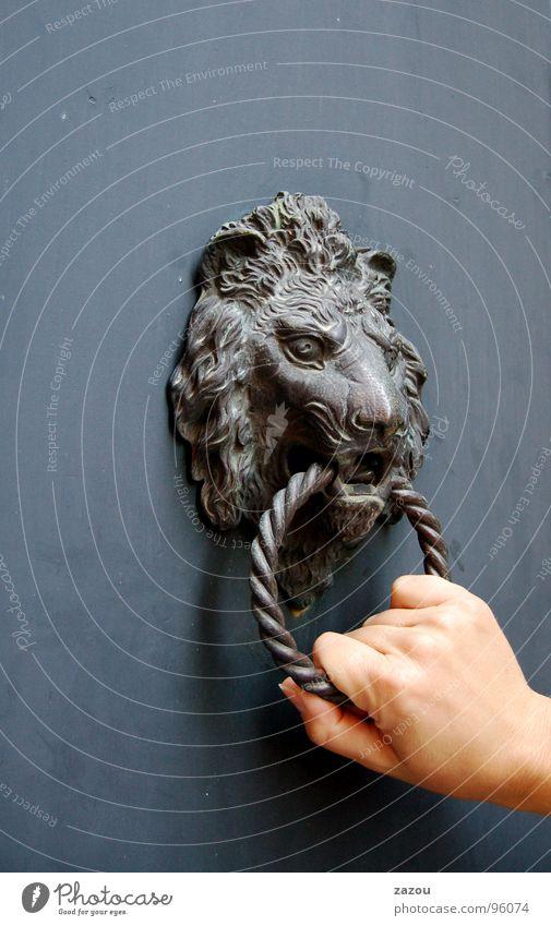 zu Besuch... Tür Griff Türklopfer Besucher Hand Löwe Eingang geheimnisvoll obskur Klingel Löwenkopf Detailaufnahme Aktion laut Geräusch Dekoration & Verzierung