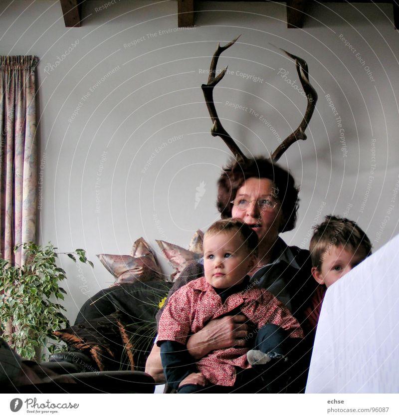 Oma Hirsch Familie & Verwandtschaft Frau Kind Großeltern träumen Großmutter Säugetier Horn Hirsche Spießer Familienfeier Gelegenheit
