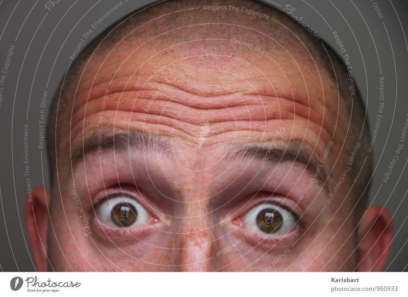 Was? Nein! Doch! Ooh! ... schon wieder Weihnachten Mensch Mann Erwachsene Auge Leben Haare & Frisuren Schule Arbeit & Erwerbstätigkeit maskulin verrückt Studium