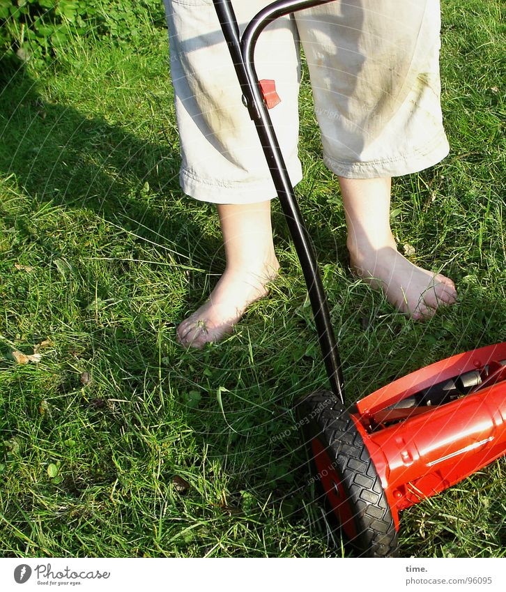 Gleich geht's hier rund Schatten Dienstleistungsgewerbe Junge Fuß Wiese Hose grün rot Rasenmäher Fleck rasenmähen