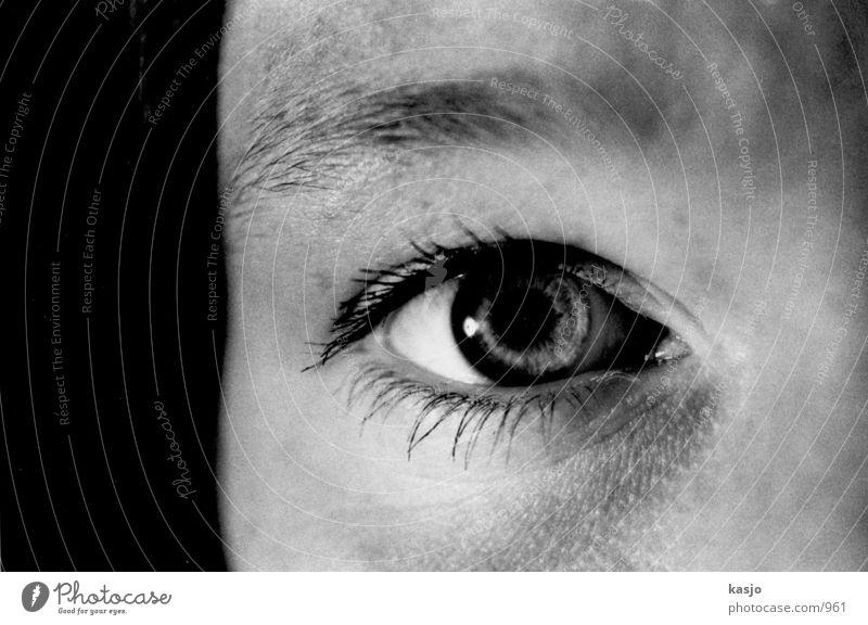 Katrin Augen Frau feminin Kopf