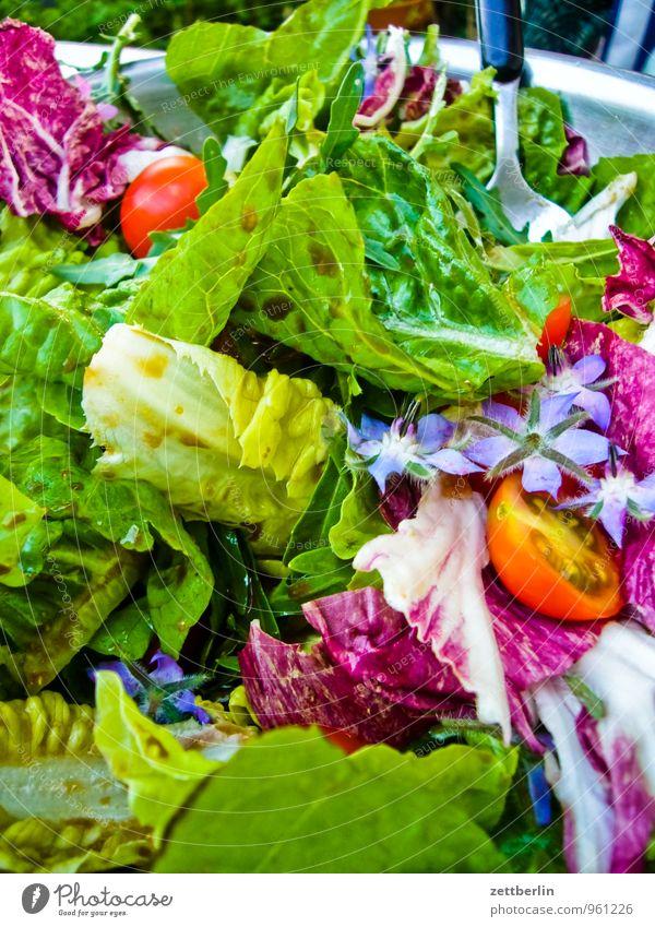 Salat Ernte Garten Gemüse Frucht Pflanze Tomate Salatbeilage Borretsch Feldsalat Salatbesteck Gesunde Ernährung Speise Essen Foodfotografie