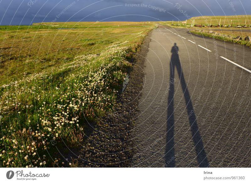 dir werd ich Beine machen Spaziergang wandern Sonnenaufgang Sonnenuntergang Island Fischerdorf Menschenleer Straße Horizont Abenddämmerung Schlagschatten Wiese