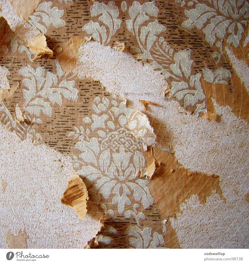 rubbellos Arbeit & Erwerbstätigkeit kaputt Bodenbelag Tapete Handwerk Wohnzimmer Haushalt Tanzfläche selbstgemacht kratzen Modernisierung Striptease
