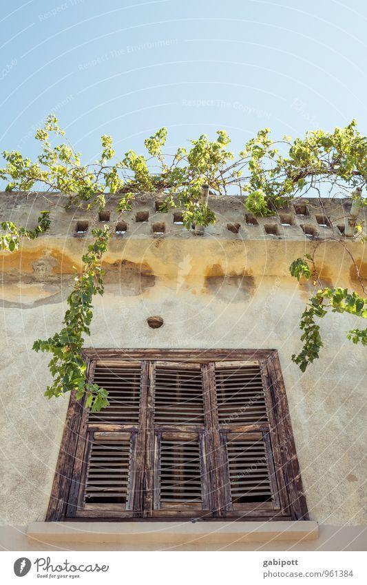 Dachgarten Wohlgefühl Zufriedenheit Erholung ruhig Meditation Ferien & Urlaub & Reisen Tourismus Ausflug Abenteuer Ferne Wolkenloser Himmel Dorf Haus Fassade