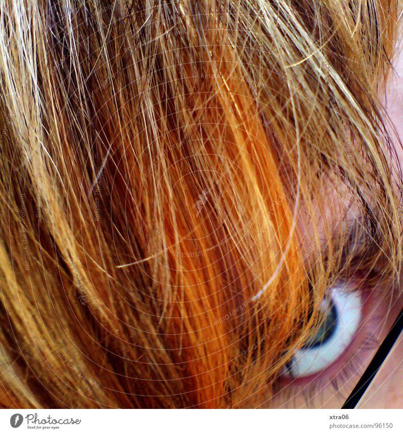 ich. blond Brille Wimpern Haarsträhne Frau rot falsch Blick Haare & Frisuren Mensch orange Auge gefärbte haare ungeschminkt strähnchen Farbe gestellt beobachten