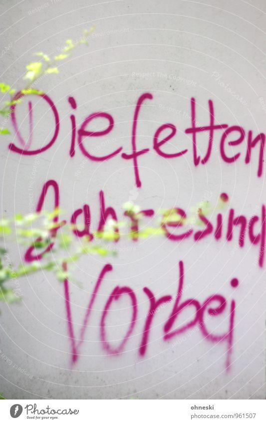 Statement Wand Graffiti Mauer rosa Fassade Schriftzeichen Wirtschaft Frustration Ärger Zweige u. Äste trotzig Wirtschaftskrise Konjunktur