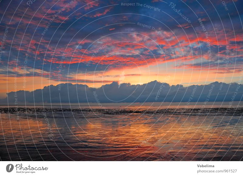 Abend am Watt Himmel Natur blau Wasser Sonne Meer rot Landschaft Wolken gelb Küste grau braun rosa Luft orange