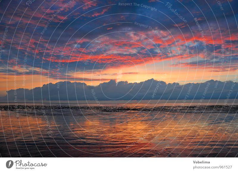 Abend am Watt Tourismus Sonne Meer Landschaft Luft Wasser Himmel Wolken Küste Nordsee blau braun mehrfarbig gelb gold grau orange rosa rot Romantik Natur