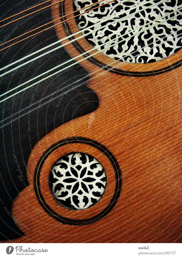 Arabische Laute elegant Stil Design exotisch schön Musik Kunst Kultur Musikinstrument Ton Holz Kunststoff Ornament Arabesken fantastisch nah harmonisch
