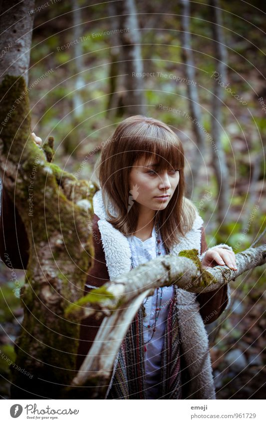 Wald Mensch Natur Jugendliche Junge Frau 18-30 Jahre dunkel Umwelt Erwachsene Herbst feminin natürlich