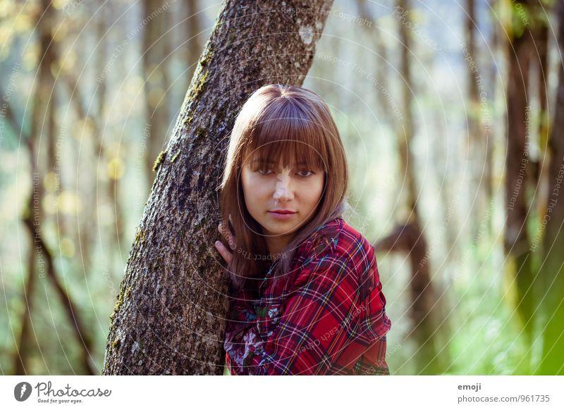 Lieblingsplatz feminin Junge Frau Jugendliche 1 Mensch Umwelt Natur Landschaft Herbst Schönes Wetter Baum Wald schön natürlich Baumstamm Farbfoto Außenaufnahme