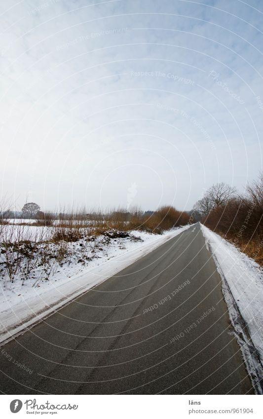 Knicklandschaft Winter Schnee Landwirtschaft Forstwirtschaft Umwelt Natur Landschaft Himmel Wolken Eis Frost Baum Sträucher Feld Verkehr Verkehrswege