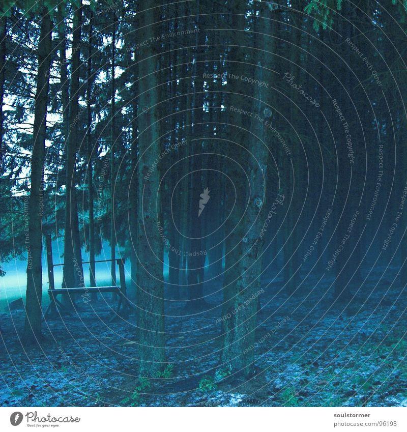 Märchenwald Wald Nebel Weihnachtskrippe Tier Wiese Feld Stimmung Zauberei u. Magie Hexe blau Regen Hagel Futterkrippe Wasserstelle Bodenbelag