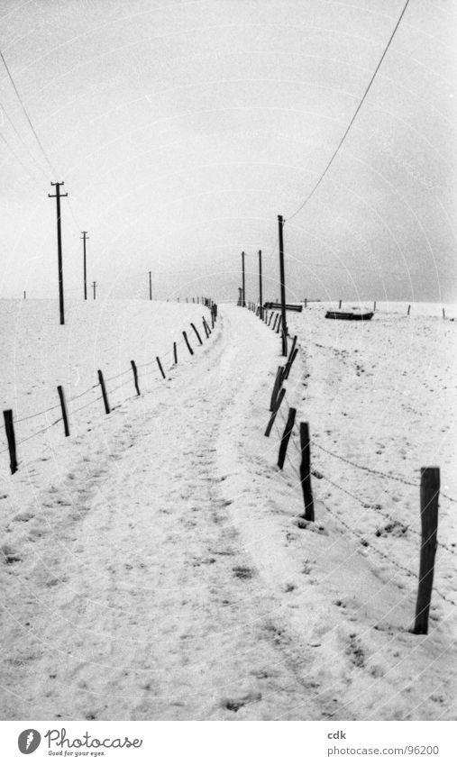 Anfang und Ende Natur schön Himmel weiß Winter ruhig Wolken Einsamkeit Ferne kalt Schnee Erholung Holz grau Wege & Pfade Landschaft
