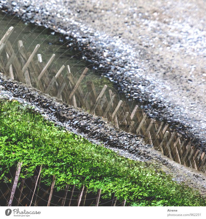 Barrieren grün Wege & Pfade grau geschlossen Spitze bedrohlich Verkehrswege Aggression Pfütze Ablehnung Feindseligkeit Gartenzaun Holzzaun verbarrikadiert