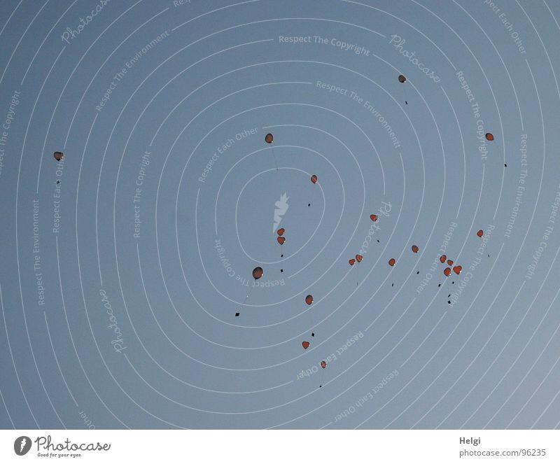 ...flieg ganz hoch ...ganz weit... Luftballon rot Leichtigkeit leicht Wolken Wunsch Glückwünsche Helium Gefühle Freude Luftverkehr Herz Freiheit Himmel Schnur